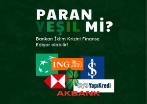 🌍 Paran Yeşil Mi?